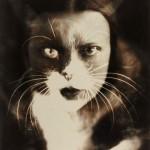 Wanda Wulz, Io+gatto (1932)