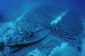 Il relitto della Julia Felix trovato a largo delle coste gradesi nel 1987