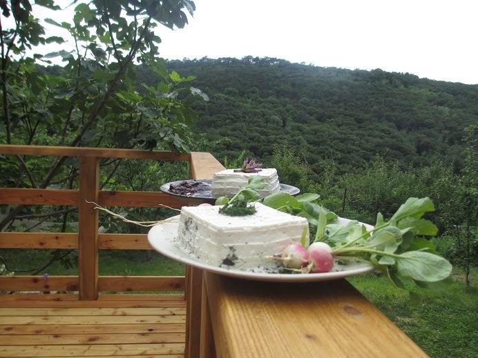 I formaggi fatti in casa - CasaLonjer (foto da madrenatura-tracavoliecicogne.blogspot.it)