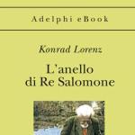 Lorenz_anello 2