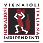 FIVI_solo logo