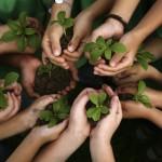 Mnai_bambini_piante