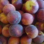 frutta-e-verdura-per-dimagrire-Nadia-Giacomo-Bo