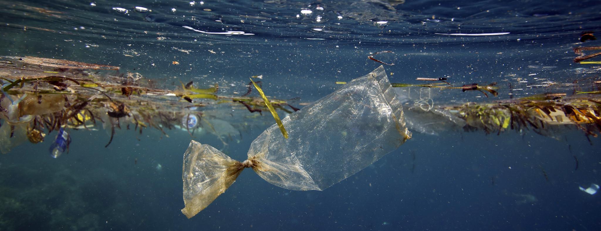 I rifiuti di plastica in mare. Di Andrea Werhenfennig